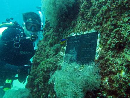 LegaSEA Reefs Now Available to the Public